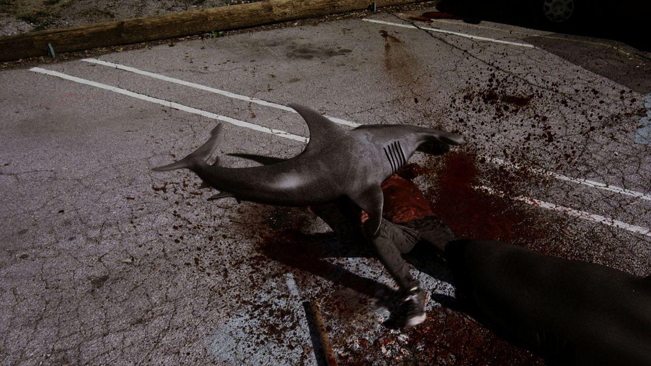 Wer hätte das gedacht, aber in Kalifornien fallen nach einem Wirbelsturm Haie vom Himmel - hungrige und hemmungslose Biester ... - Bildquelle: 2013, THE GLOBAL ASYLUM INC.  ALL RIGHTS RESERVED.