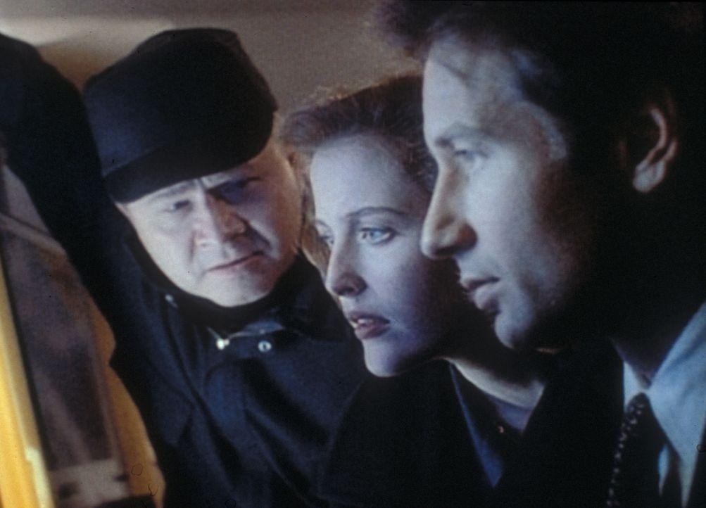 Morgan (Stephen E. Miller, l.), Scully (Gillian Anderson, M.) und Mulder (David Duchovny, r.) wundern sich, dass an Bord der Piper Maru keine Strahl... - Bildquelle: TM +   2000 Twentieth Century Fox Film Corporation. All Rights Reserved.