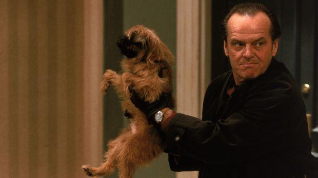 Der kleine Zwergpinscher Verdell erschüttert Melvins (Jack Nicholson) Sauberk...