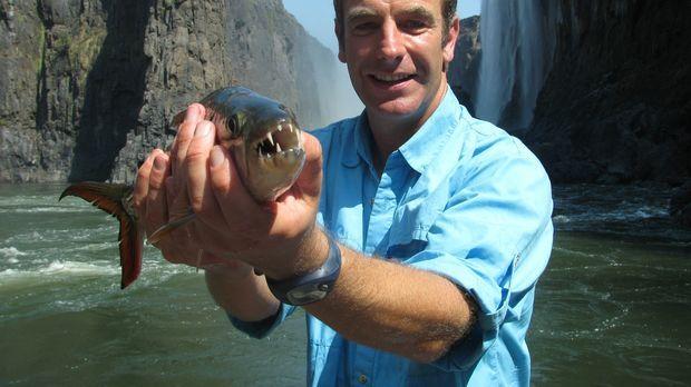Extreme Fishing - (3. Staffel) Robson Green ist ein britischer Schauspieler -...