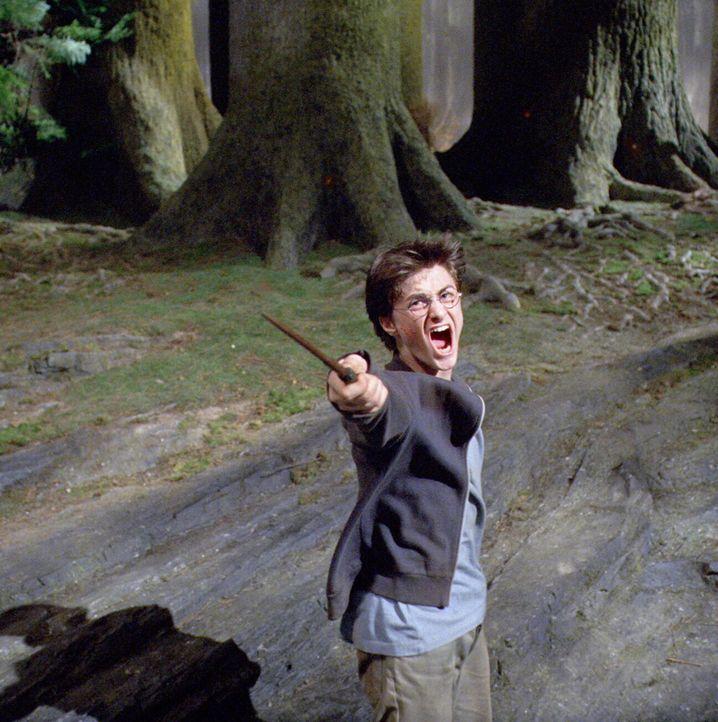 Harry Potter (Daniel Radcliffe) muss seinen ganzen Mut aufbringen und all seine außergewöhnlichen Fähigkeiten einsetzen, um das Geheimnis zu lüften,... - Bildquelle: Warner Television
