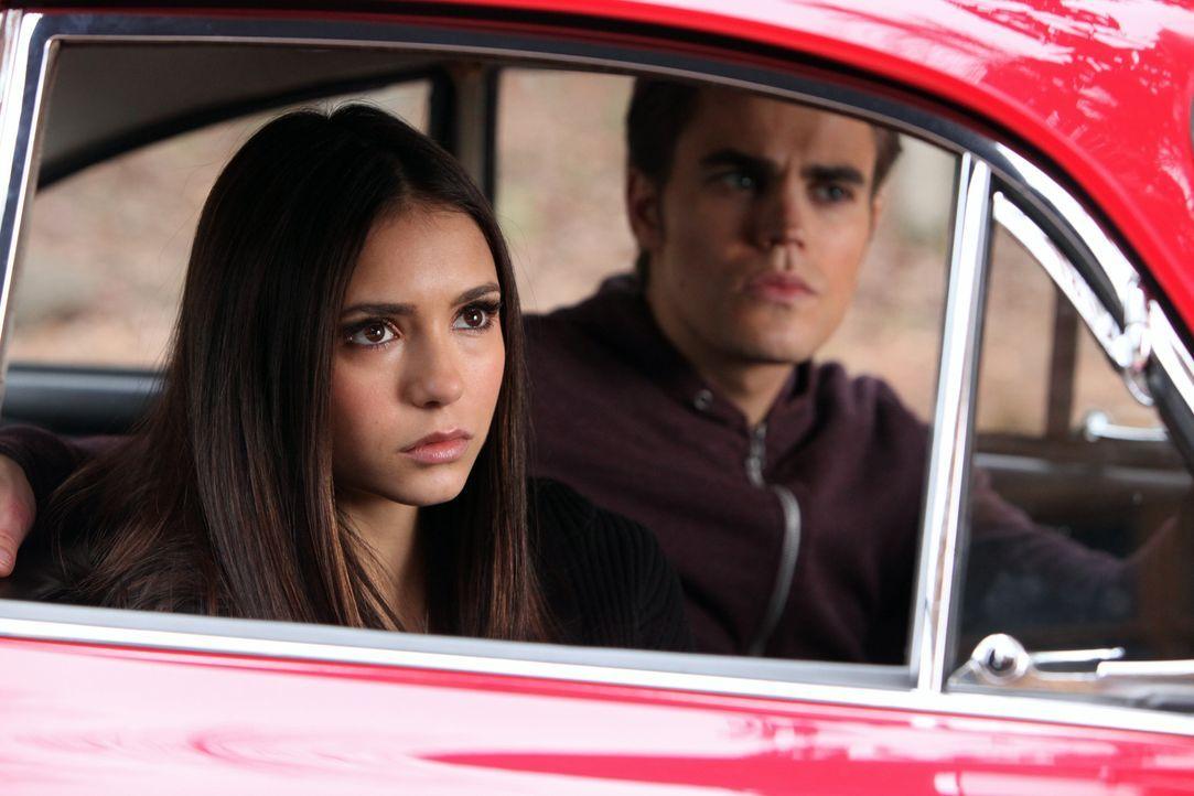 Um Abstand von ihrem Vater John und Elijah zu bekommen, fahren Elena (Nina Dobrev, l.) und Stefan (Paul Wesley, r.) zum Ferienhaus der Gillberts ... - Bildquelle: Warner Brothers