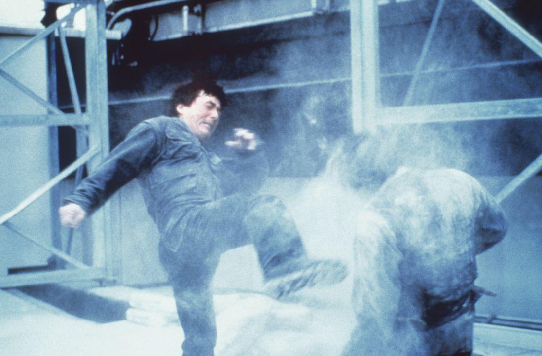 Ein starker Gegner: Whoami (Jackie Chan, r.) ... - Bildquelle: Columbia TriStar Film