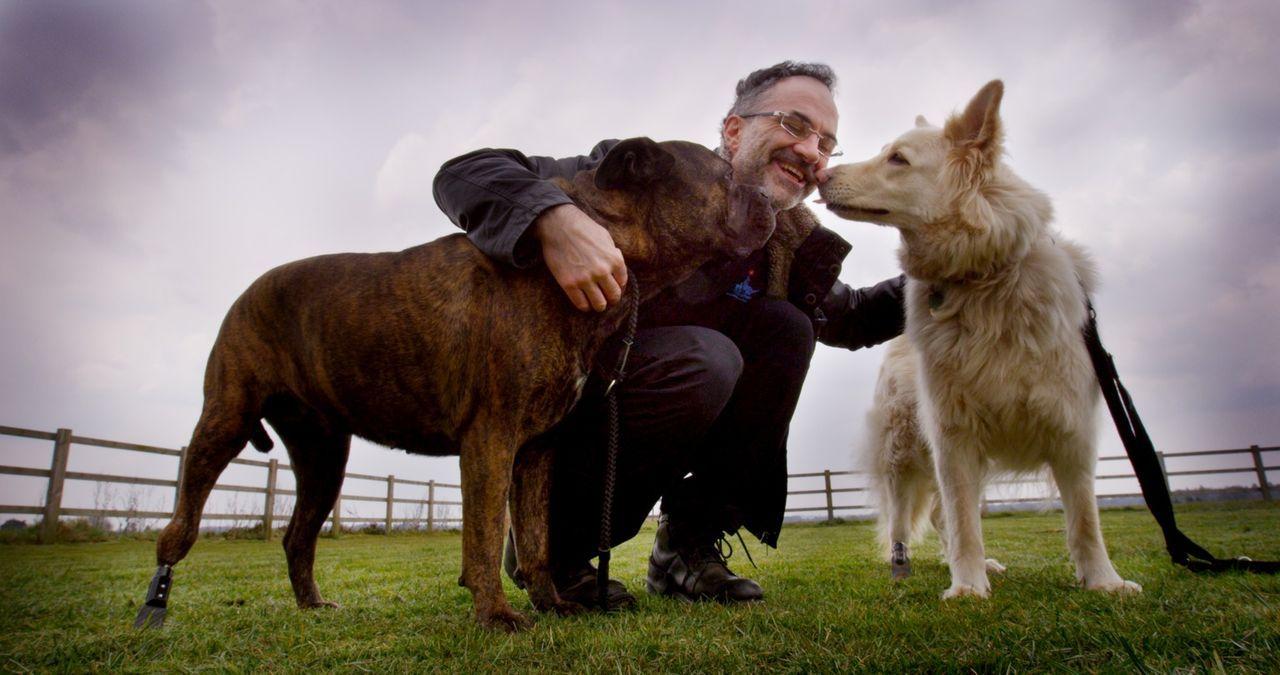 (1. Staffel) - Diesen beiden Hunden konnte Noel Fitzpatrick dank modernster Techniken und unglaublichen Prothesen schon helfen ... - Bildquelle: Zodiak Rights 2015