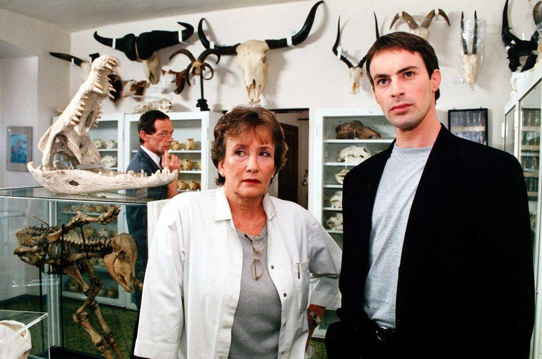Kommissar Brandtner (Gedeon Burkhard, r.) erkundigt sich bei der Museumsleiterin (Else Ludwig, l.) nach verschiedenen Hundegebissen ... - Bildquelle: Ali Schafler Sat.1