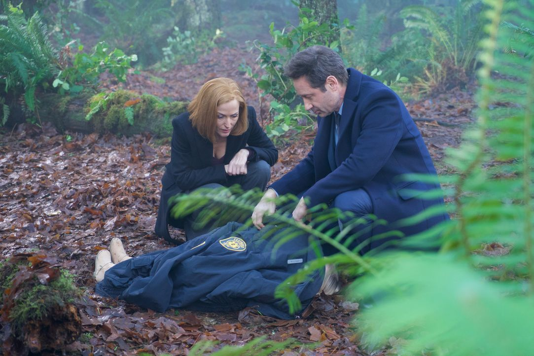 Als in Connecticut ein kleiner Junge angeblich von einem Tier ermordet wird, ahnen Scully (Gillian Anderson, l.) und Mulder (David Duchovny, r.) sch... - Bildquelle: Shane Harvey 2018 Fox and its related entities.  All rights reserved.