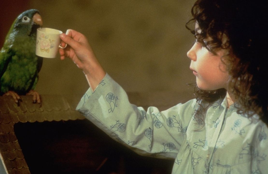 Nur mit ihrem Papageienfreund Paulie (l.) plappert die kleine Marie (Hallie Kate Eisenberg, r.) hemmungslos drauflos ... - Bildquelle: DreamWorks