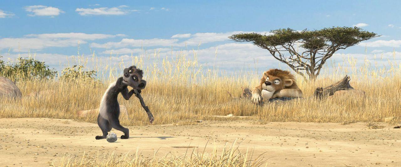 Als richtiges Team machen sich das Erdmännchen Billy (l.) und der Löwe Sokrates (r.) auf die Suche nach Wasser und entdecken erschreckendes ... - Bildquelle: Constantin Film Verleih GmbH