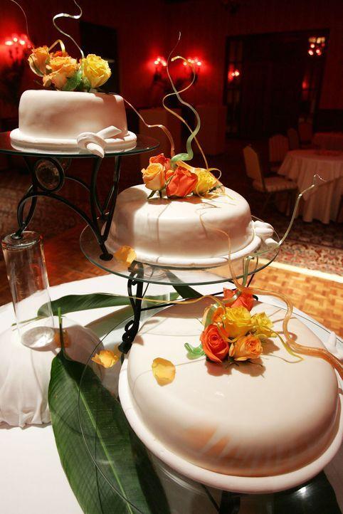 Hochzeitstorte-dreigeteilt-AFP - Bildquelle: AFP