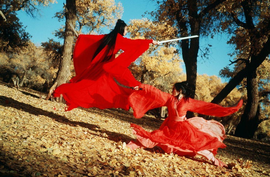 Opferbereit: Freiheitskämpferin Flying Snow (Maggie Cheung, l.) und die Liebende Moon (Ziyi Zhang, r.) ... - Bildquelle: Constantin Film