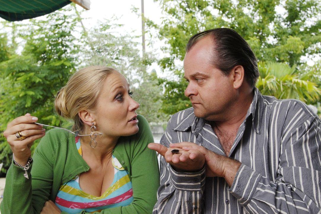 Janine (Janine Kunze, l.) und Markus (Markus Majowski, r.) diskutieren darüber, ob der Anteil an lebenden Proteinen in ihrem Salat gesund ist oder... - Bildquelle: Sat.1