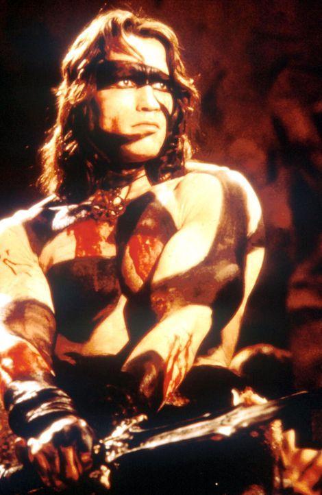 15 Jahre nachdem sein Dorf von Thulsa Doom überfallen wurde, versucht Conan (Arnold Schwarzenegger) Rache zu nehmen ... - Bildquelle: Universal Pictures