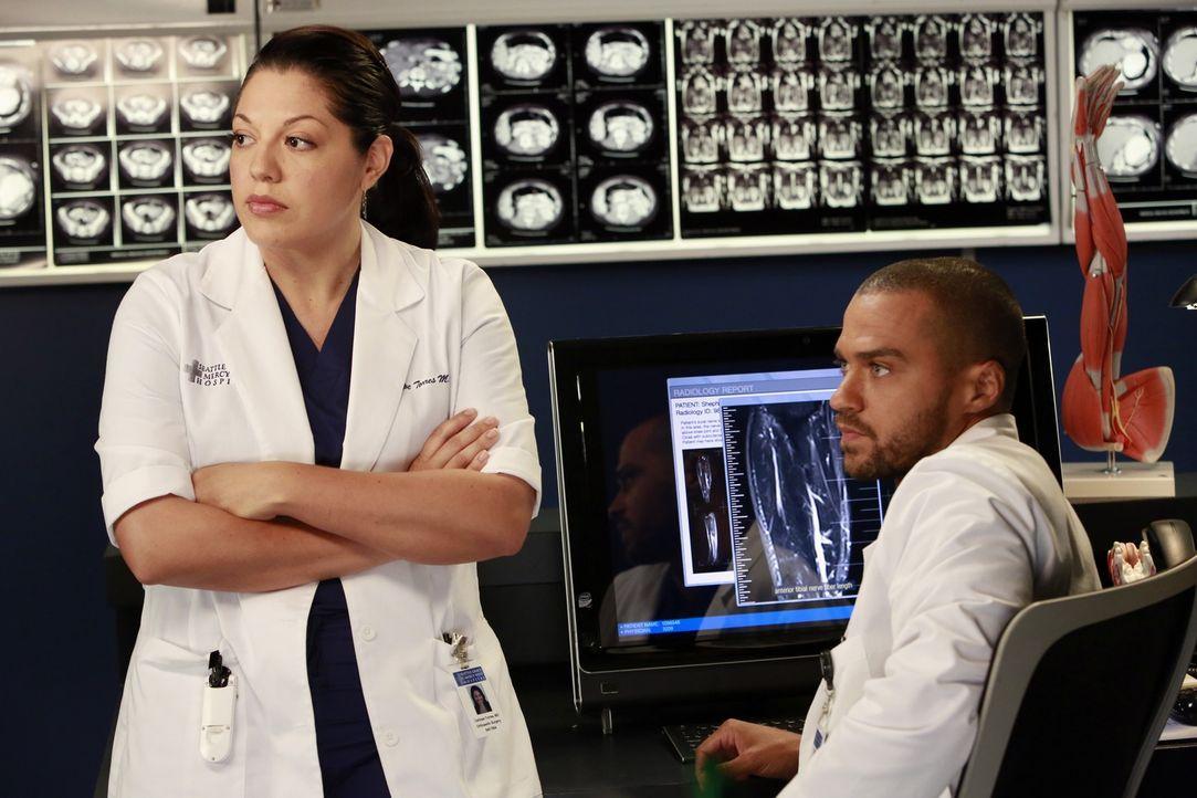 Während Cristina und Owen ihre Ehe endgültig beenden, versuchen Callie (Sara Ramirez, l.) und Jackson (Jesse Williams, r.), Derek zu einer riskanten... - Bildquelle: ABC Studios