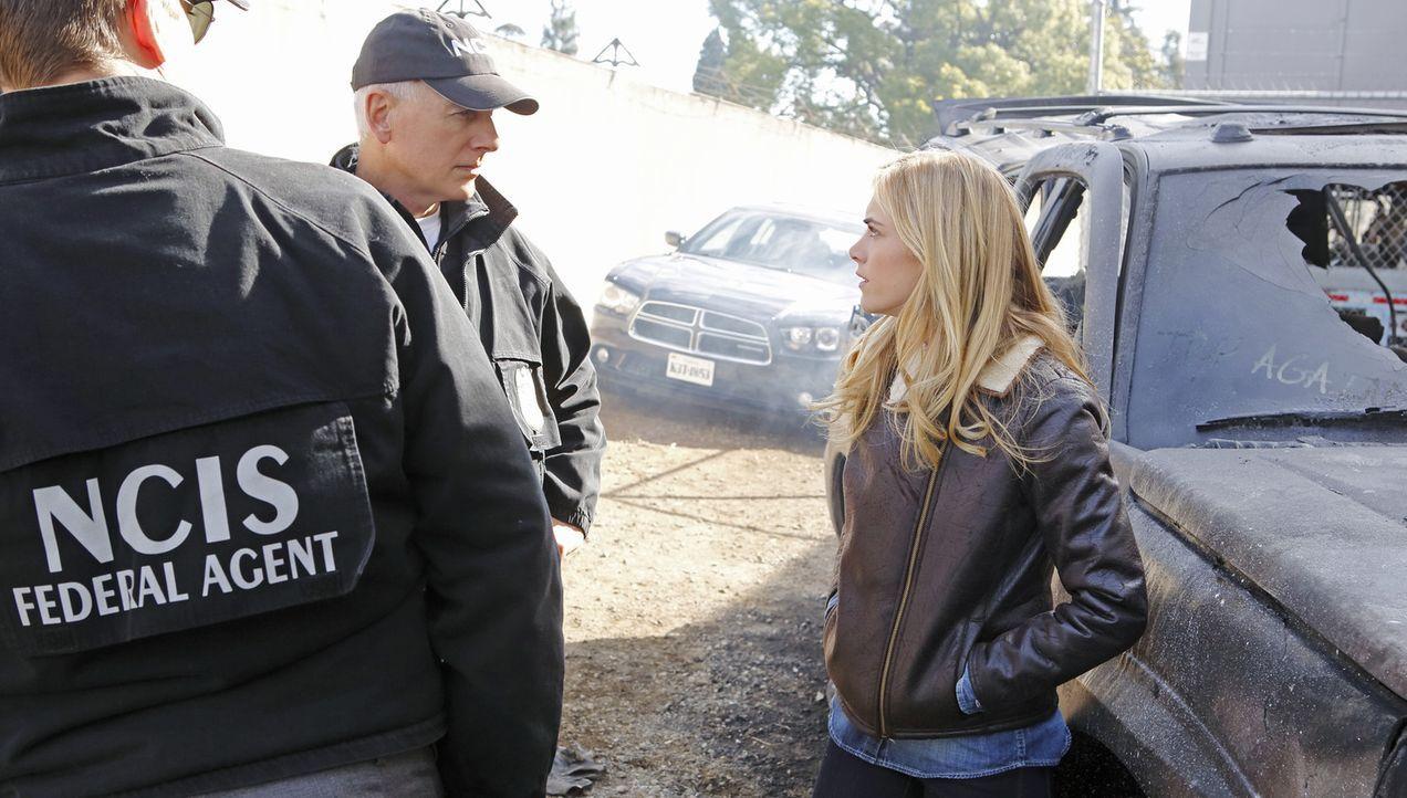 Bei dem Versuch, den Terroristen Parsa zu finden, machen Gibbs (Mark Harmon, M.), Ellie (Emily Wickersham, r.) und Tony (Michael Weatherly, l.) mit... - Bildquelle: CBS Television