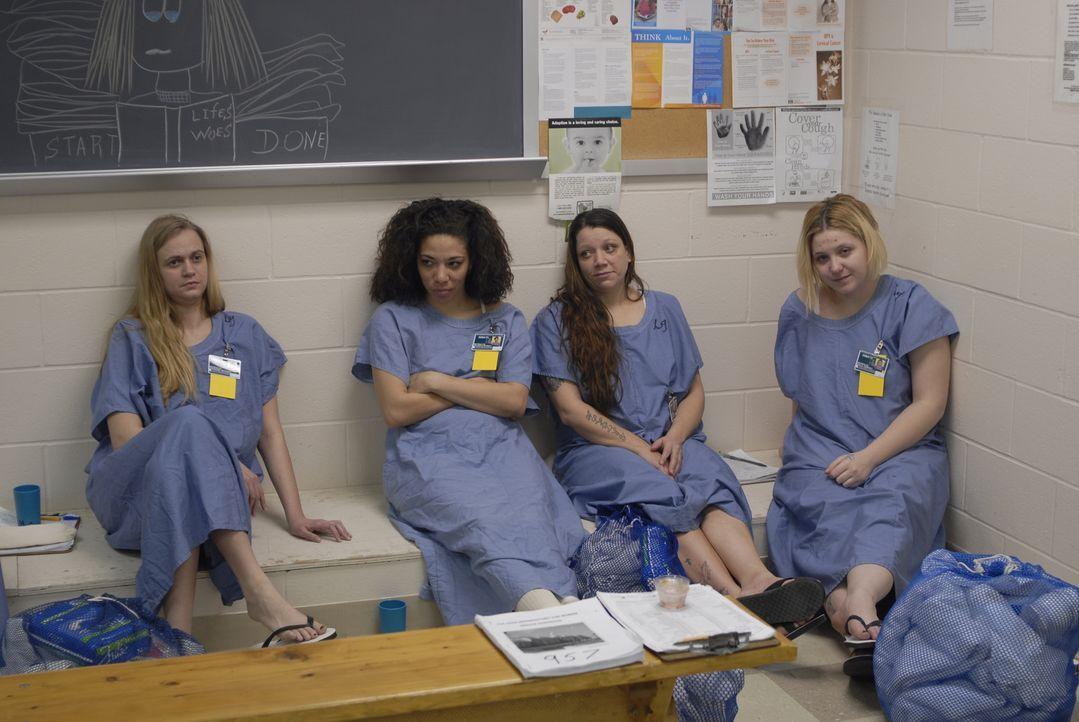 Die Neuankömmlinge warten auf ihre Einweisungen ... - Bildquelle: Alexandra Meistrell 2010 NGC Network US, LLC All Rights Reserved