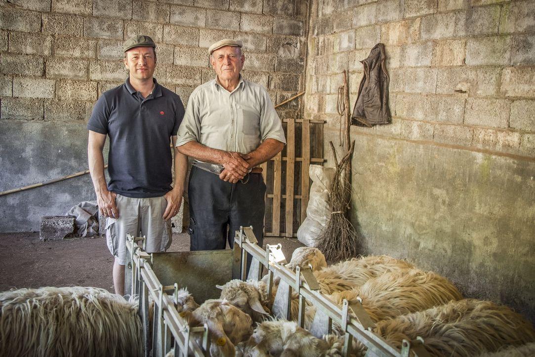In Sardinien trifft sich Jamie Oliver (l.) mit dem 88-jährigen Schäfer Tonino (r.) und erkennt, woher dieser in seinem hohen Alter noch die Energie... - Bildquelle: 2016 Jamie Oliver Enterprises Limited