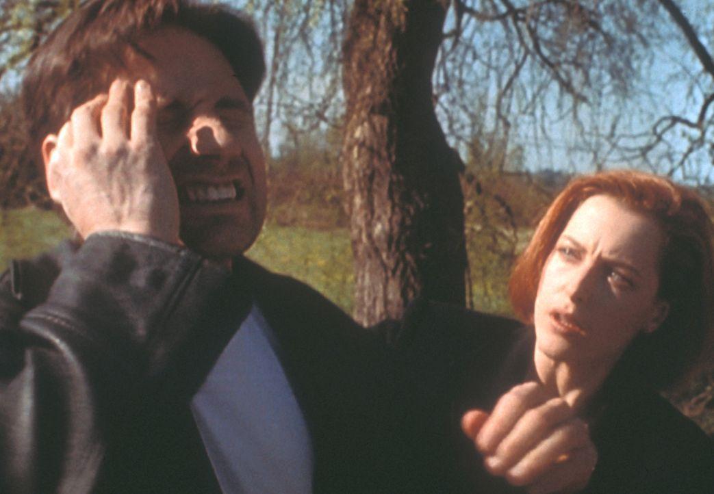 Mulder (David Duchovny, l.) bekommt immer wieder Anfälle, bei denen er nicht ansprechbar ist und sich danach an nichts mehr erinnern kann; Scully (G... - Bildquelle: TM +   2000 Twentieth Century Fox Film Corporation. All Rights Reserved.