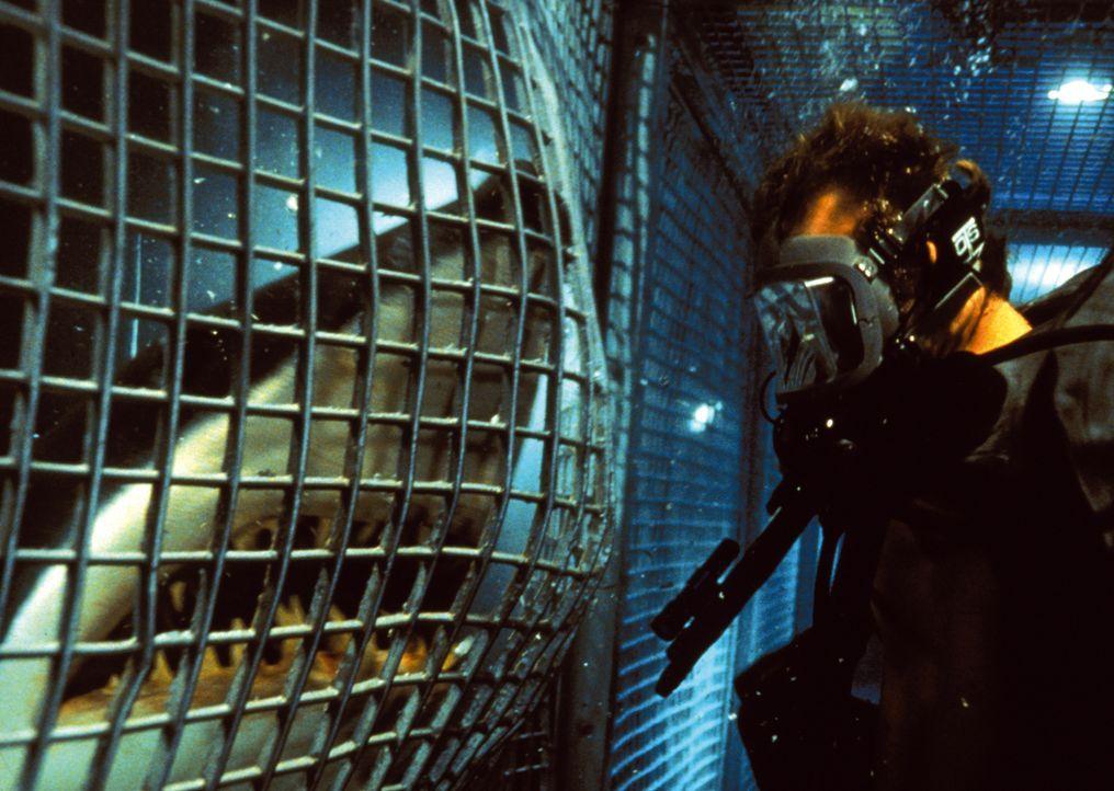 Noch weiß Tom Scoggins (Michael Rapaport) nicht, dass aus seinen riesigen Schützlingen inzwischen überaus intelligente Bestien geworden sind ... - Bildquelle: Warner Bros. Pictures