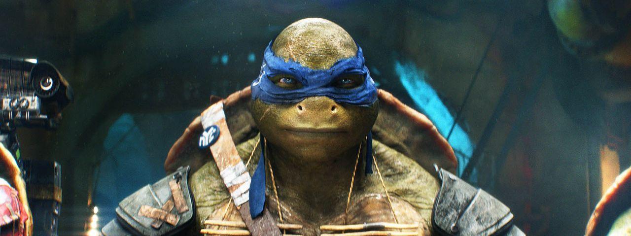 teenage-mutant-ninja-turtles-25-Paramount-Pictures - Bildquelle: Paramount Pictures