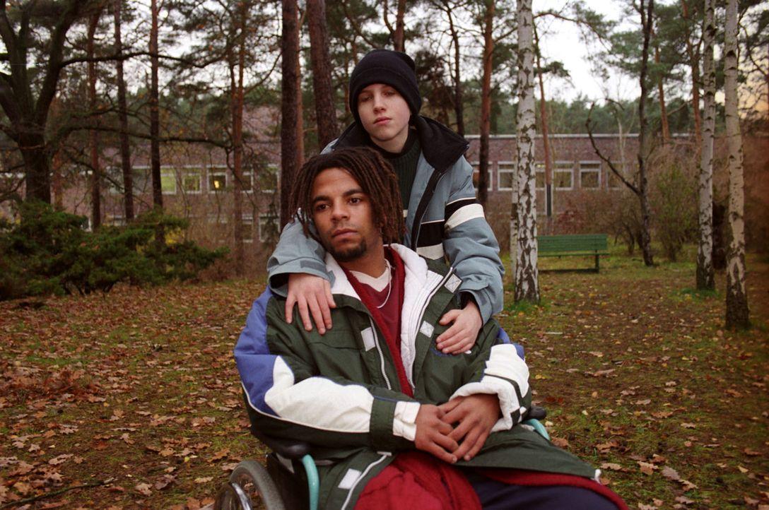 Die jungen Szene-Künstler Henry (Simon Pearce, vorne) und Thomas (Sven Koller, hinten) sind ein eingeschworenes Team - und bald sollen sie sogar Brü... - Bildquelle: Noreen Flynn Sat.1