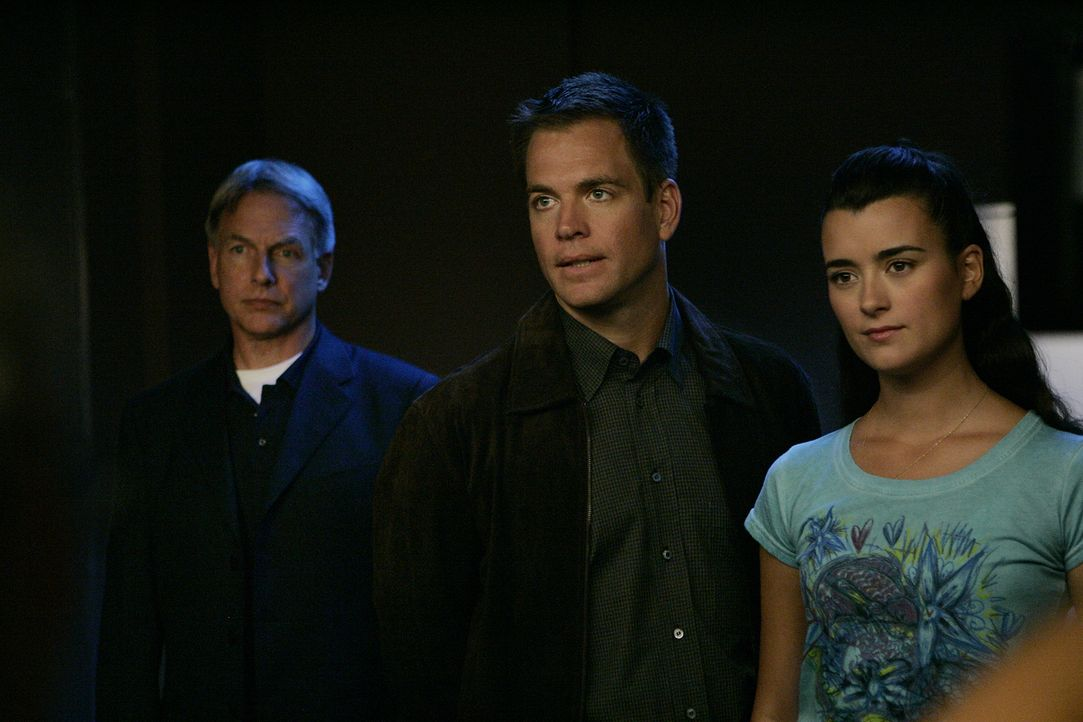 Sind total überrascht, als sie erfahren, dass Gibbs 3. Ex-Frau eine der Verdächtigen ist: Gibbs (Mark Harmon, l.), Tony (Michael Weatherly, M.) und... - Bildquelle: CBS Television