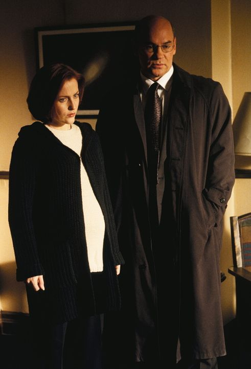 Skinner (Mitch Pileggi, r.) und Scully (Gillian Anderson, l.) erfahren, dass Mulder die Festplatte von Salts Laptop aus der Asservatenkammer des FBI... - Bildquelle: TM +   2000 Twentieth Century Fox Film Corporation. All Rights Reserved.