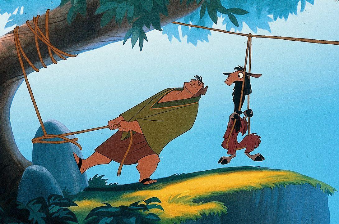 Nachdem König Kuzco in ein Lama verwandelt wurde, trifft er auf den gutmütigen Bauern Patcha,  der sich bereit erklärt, ihm bei der Suche nach ei... - Bildquelle: Disney Enterprises Inc.