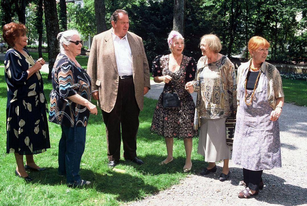 Resi Berghammer (Ruth Drexel, 2.v.l.) feiert ihr 50-jähriges Klassentreffen. Versammelt haben sich ihre Mitschülerinnen Cornelia (Lis Verhoeven, l.)... - Bildquelle: Magdalena Mate Sat.1