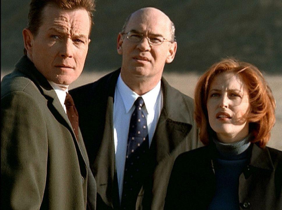 Scully (Gillian Anderson, r.), Doggett (Robert Patrick, l.) und Skinner (Mitch Pileggi, M.) sind in Montana einem Raumschiff auf der Spur, das halbt... - Bildquelle: TM +   2000 Twentieth Century Fox Film Corporation. All Rights Reserved.