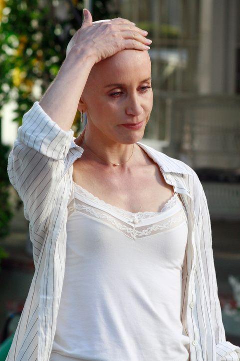 Alles kommt ans Licht: Lynette (Felicity Huffman) ... - Bildquelle: ABC Studios
