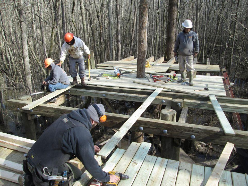 Für die Treehouse Guys ist kein Baum zu hoch und kein Holz zu schwer. In North Carolina bauen sie an einem neuen Baumhaus-Projekt mit der Windsor-Community. Die Herausforderung: Das Gebiet befindet sich im Moor und ist vollkommen versumpft ...