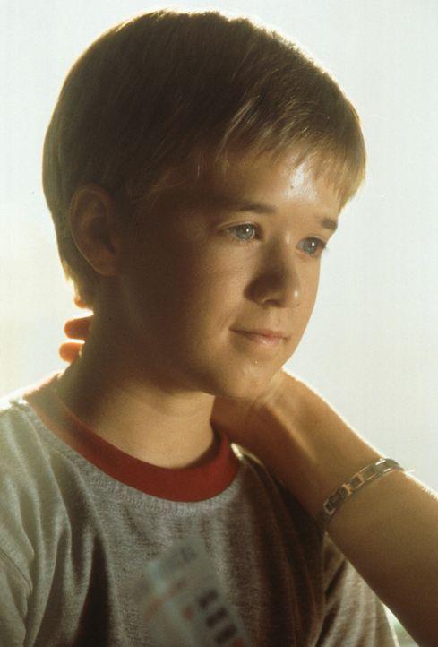 Roboter David (Haley Joel Osment) kann wie ein Menschenkind lieben, glücklich, gekränkt und verzweifelt sein, obwohl er weder essen noch schlafen... - Bildquelle: David James TM &   2001 Warner Bros. and Dreamworks, LLC. (ALL RIGHTS RESERVED)
