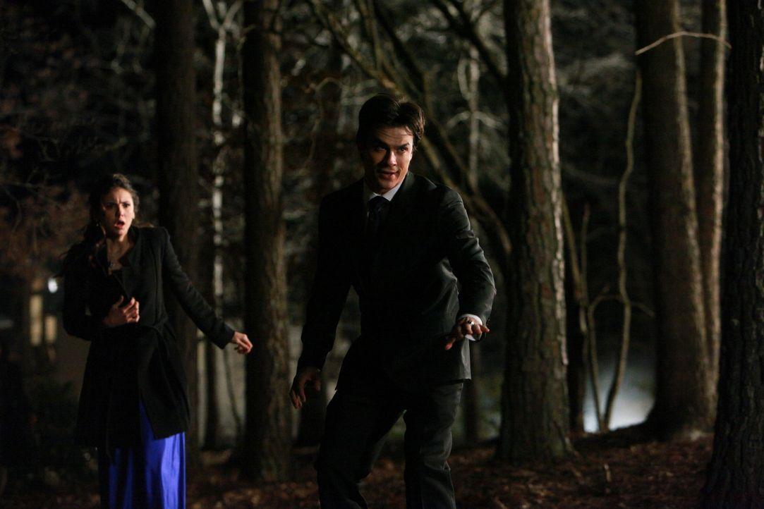 Elena (Nina Dobrev, l.) ist geschockt, diese Seite von Stefan zu sehen. Damon (Ian Somerhalder, r.) versucht, ihn zu beruhigen, um Schlimmeres zu ve... - Bildquelle: Warner Bros. Television