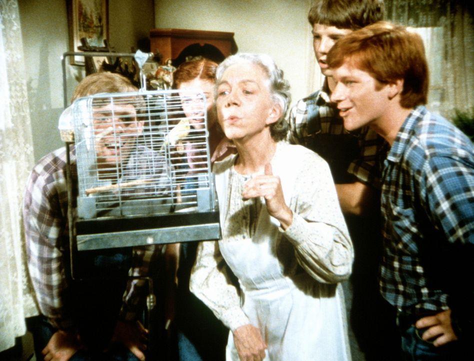 Großmutter (Ellen Corby, M.) und die Kinder, Jason (Jon Walmsley, l.), Elizabeth (Kami Cotler, 2.v.l.), Jim Bob (David W. Harper, 2.v.r.) und Ben (E... - Bildquelle: WARNER BROS. INTERNATIONAL TELEVISION