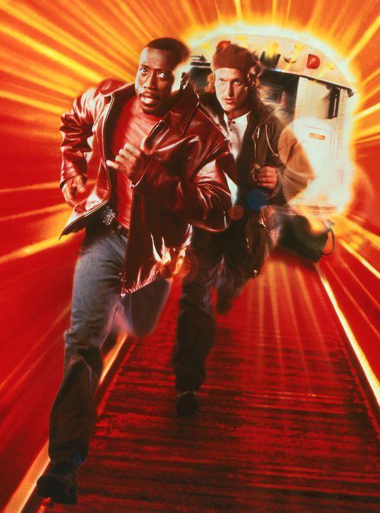 Die Adoptivbrüder Charlie (Woody Harrelson, r.) und John (Wesley Snipes, l.) haben außer ihrem Job nicht viel gemeinsam ... - Bildquelle: Columbia Tristar