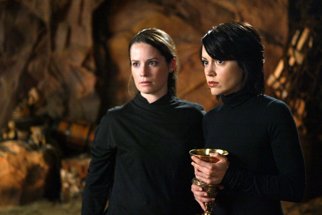 Phoebe (Alyssa Milano, r.), Piper (Holly Marie Combs, l.) sind gezwungen, einen goldenen Kelch aus einem Museum zu stehlen, um Paige zu helfen ... - Bildquelle: Paramount Pictures