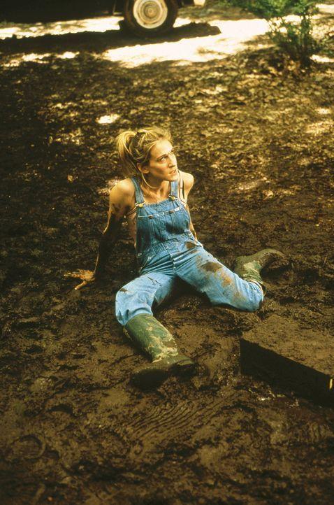 Carrie (Sarah Jessica Parker) muss sich Aidan zuliebe wirklich zusammenreißen, um nicht auf dem Lande durchzudrehen. - Bildquelle: Paramount Pictures
