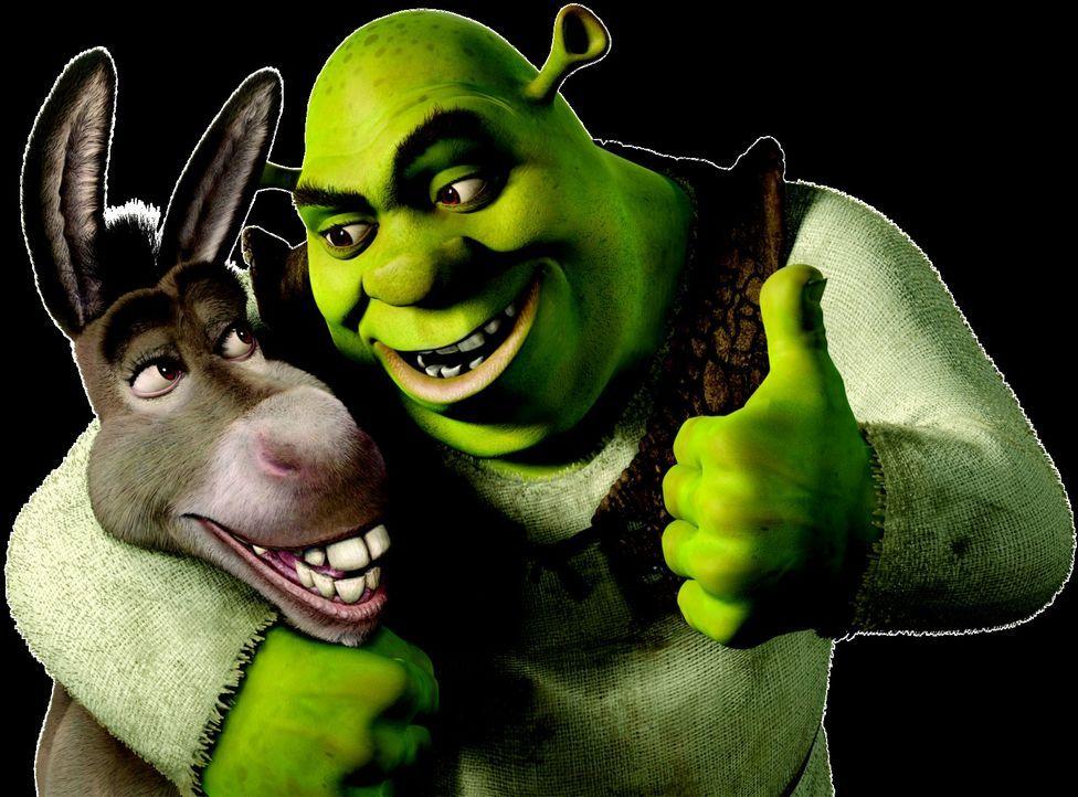 Schon bald wird Shrek, r. und Esel Donkey, l. klar, dass der Besuch bei den Schwiegereltern keine gute Idee war ... - Bildquelle: DreamWorks SKG