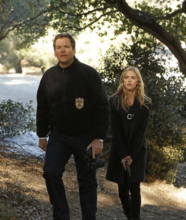Special Agent Anthony DiNozzo (Michael Weatherly, l.) und Ellie Bishop (Emily Wickersham, r.) müssen die Hilfe des Ministeriums für Verteidigung i... - Bildquelle: CBS Television