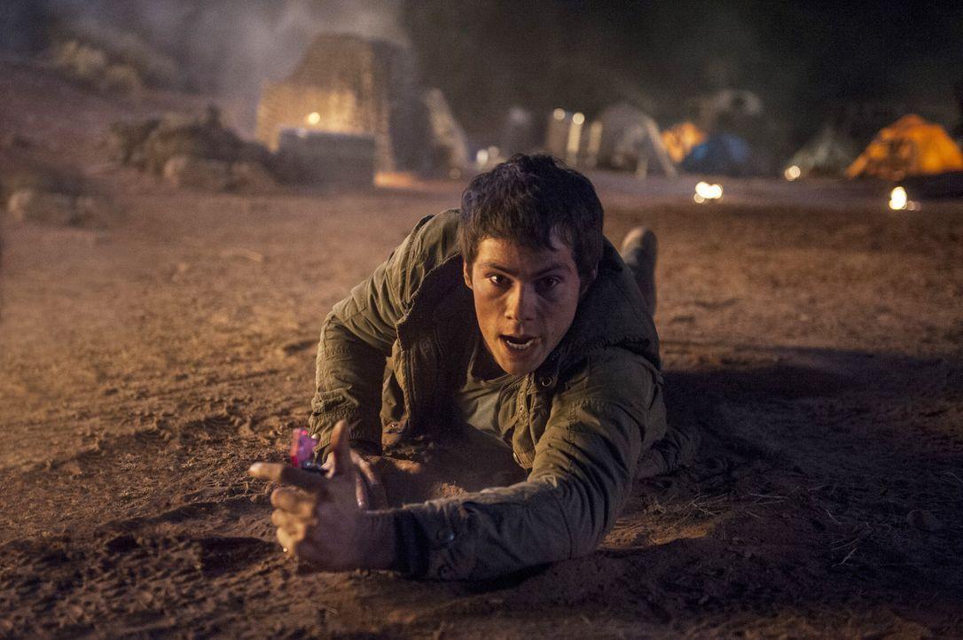 Dylan-O-Brien-The-Maze-Runner-Die-Auserwählten-in-der-Brandwüste-2015Twentieth-Century-Fox - Bildquelle: 2015 Twentieth Century Fox