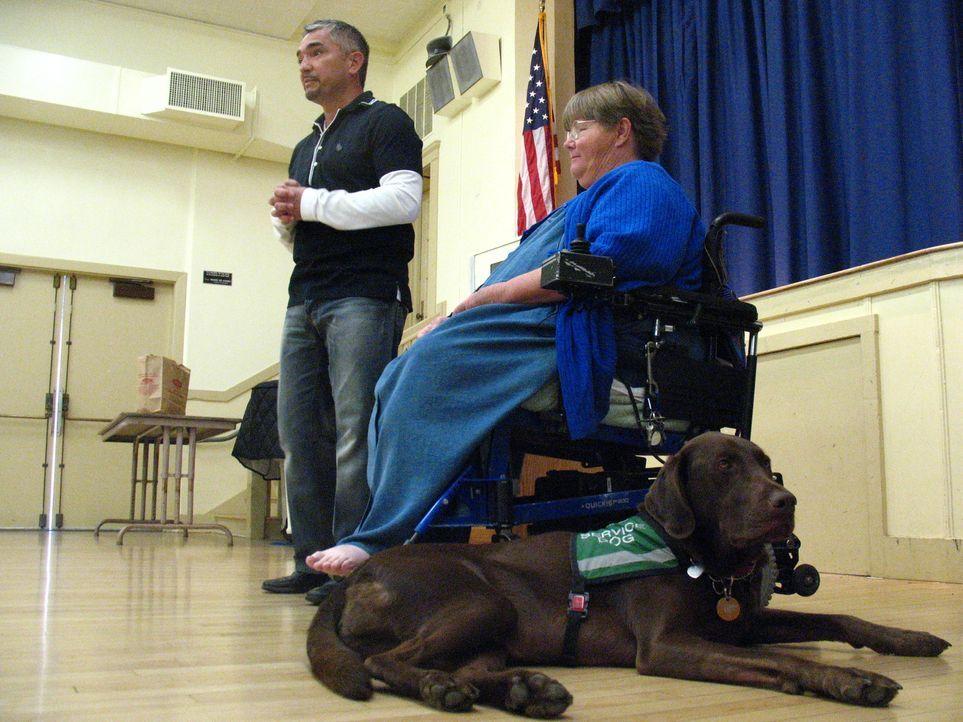 Labrador Beau ist eine große Stütze für sein Frauchen Anita Brandenburg (r.), die durch eine Nerven- und Muskelerkrankung an den Rollstuhl gefesselt... - Bildquelle: Rive Gauche Intern. Television