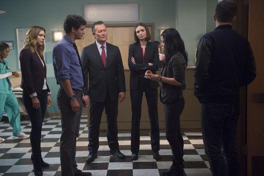 Nachdem Sylvester aus Versehen eine Bombe explodieren lässt, müssen Paige (Ka...