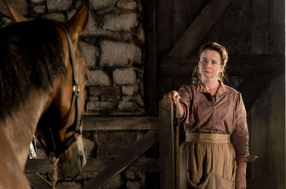 Rosie (Emily Watson) ist entsetzt, denn das Pferd, das ihr Mann ersteigert hat, ist kein Ackergaul, sondern ein edles Reitpferd, dass das steinige F... - Bildquelle: Dreamworks II Distribution Co., LLC.  All Rights Reserved