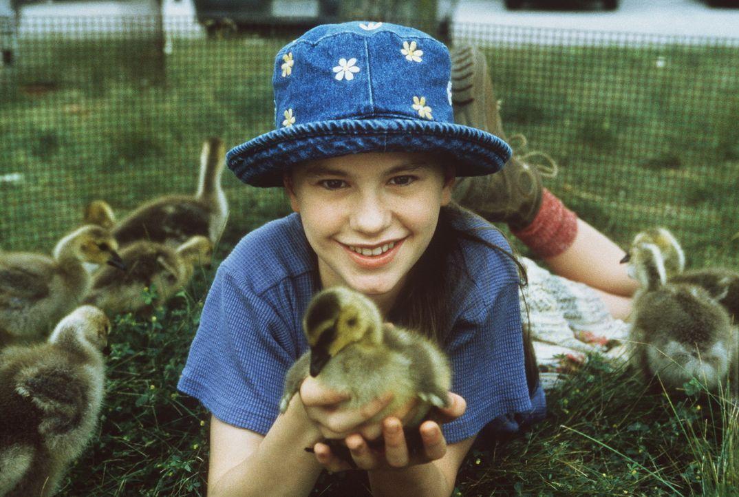 Nach dem Tod ihrer Mutter zieht die kleine Amy (Anna Paquin) zu ihrem Vater, der als Künstler und Flugzeugbauer auf dem Land lebt. Als sie sich ein... - Bildquelle: Columbia Pictures