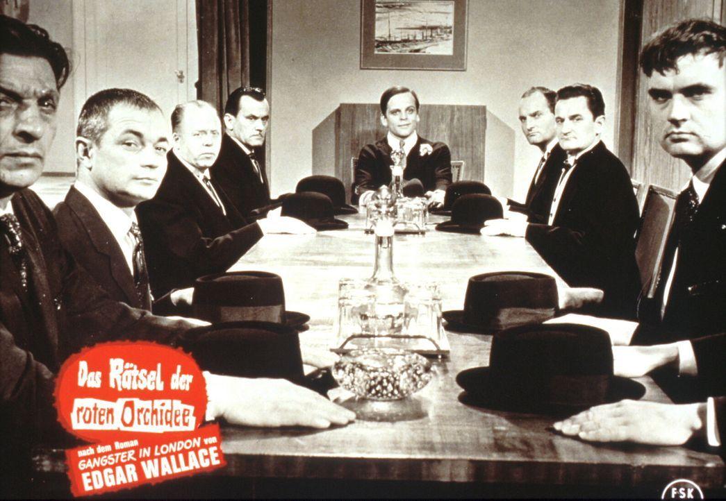 Der schöne Steve (Klaus Kinski, M.) und seine Bande bitten zur Kasse, und zwar mit Nachdruck: Wer nicht zahlen will, wird am nächsten Tag ermordet a... - Bildquelle: Constantin Film