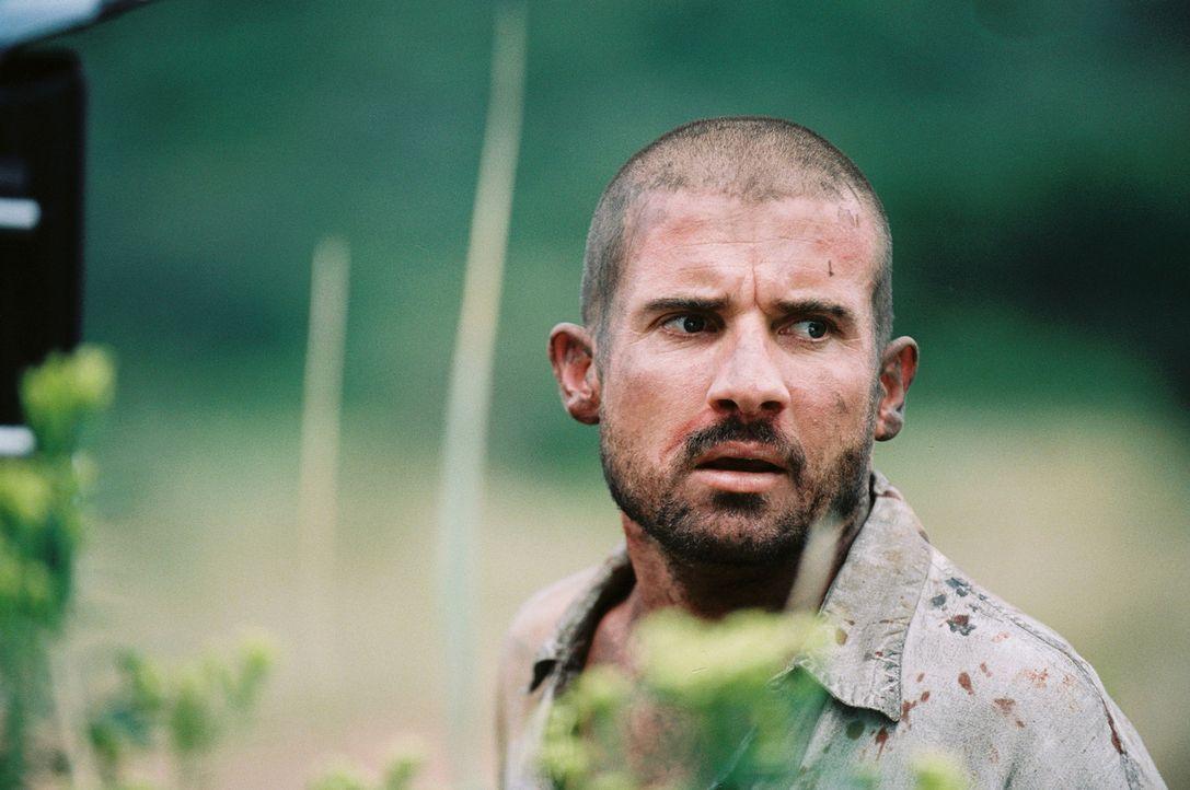 Vom Jäger zum gnadenlos Gejagten: Fernsehproduzent Tim (Dominic Purcel) ... - Bildquelle: Hollywood Pictures Company.  All rights reserved