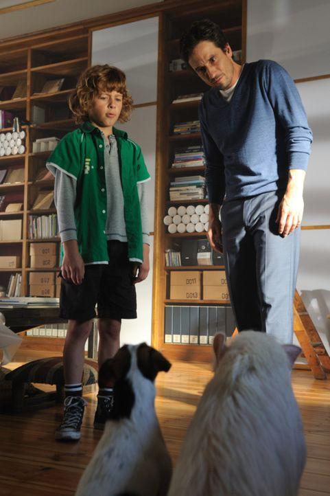 Jan (Max Boekhoff, l.) und Peter (Oliver Mommsen, r.) trauen ihren Ohren nicht: Haben Paula (vorne r.) und Johnny (vorne l.) gerade wirklich mit ihn... - Bildquelle: Hardy Spitz SAT.1