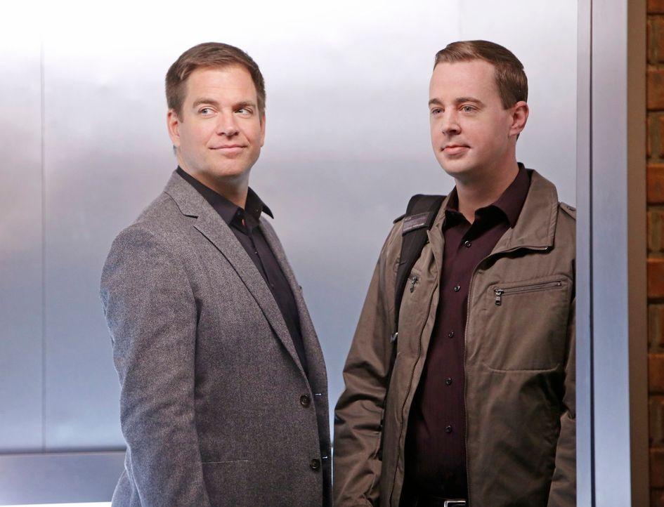 Auf der Jagd nach Parsa: McGee (Sean Murray, r.) und DiNozzo (Michael Weatherly, l.) ... - Bildquelle: CBS Television
