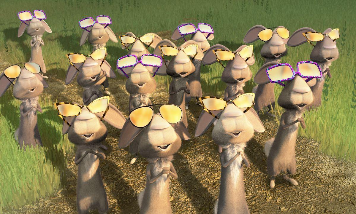 Auch Kaninchen wissen, wie sie sich gegen das Sonnenlicht schützen können ... - Bildquelle: Sony Pictures Television International. All Rights Reserved