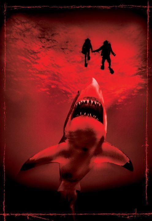 Ein gigantischer, ewig hungriger Fleischfresser, der alles Leben in die Tiefe zerrt, wartet auf neue Opfer: der Bullenhai, der gefährlichste Hai de... - Bildquelle: 2003 Sony Pictures Television Inc. All Rights Reserved.